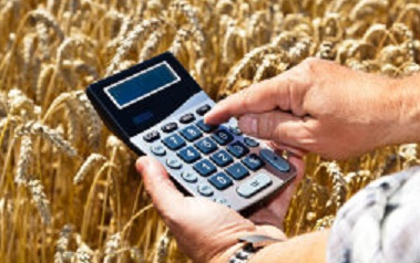New Calculator Helps Farmers Maximize Return on Harvest