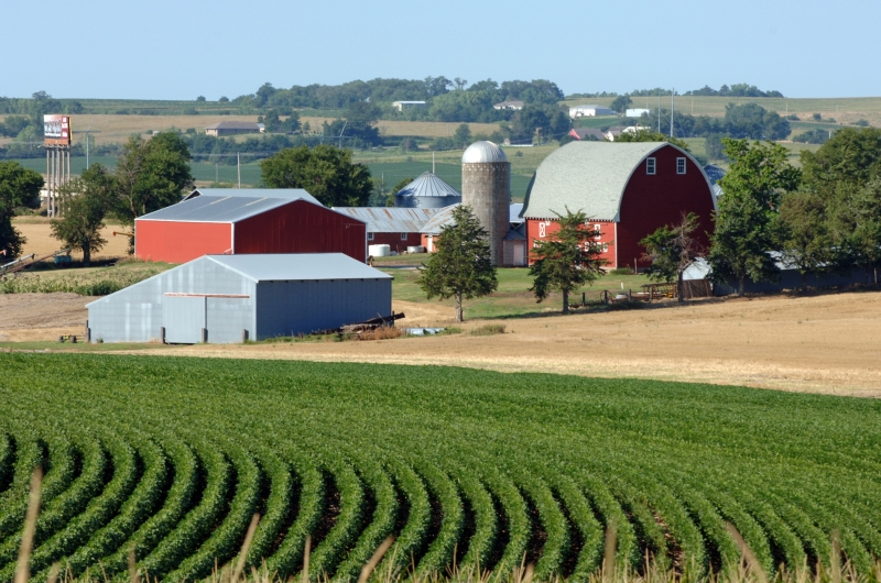 Nebraska Farmland Value Declines