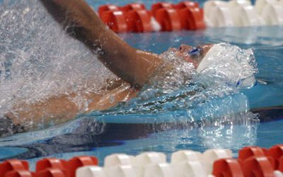 Sharks Summer Splash Swim Results