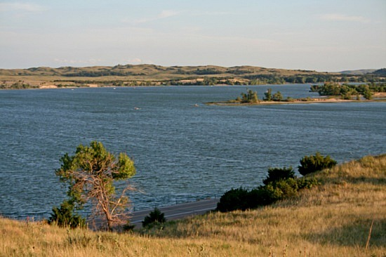 E. Coli Levels Back to Normal At Merritt Reservoir