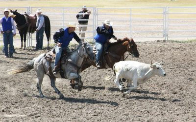 Valentine Contestants Deliver Stellar Showing at NPCC Rodeo