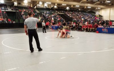 State Dual Wrestling