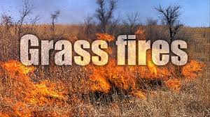 Large Grass Fire in Mustang Meadows Area