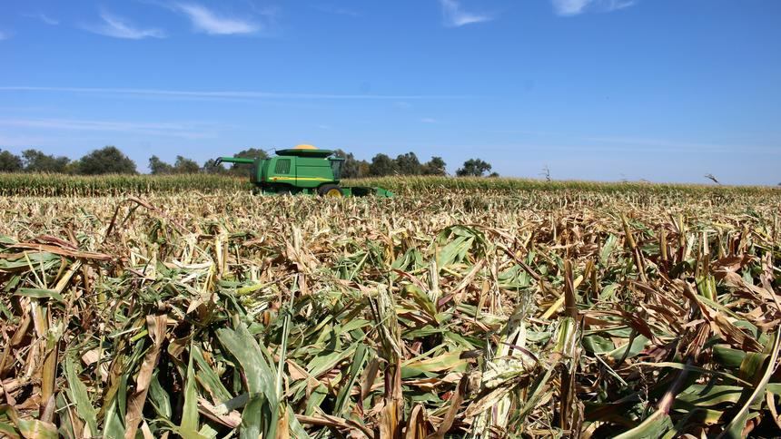 South Dakota Crop Report