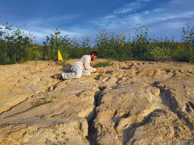 Discover Niobrara's Fossil Past