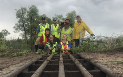 Volunteers Team Up with Refuge Staff to Repair Turtle Fences