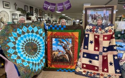 Bull Bash Quilt Show Results