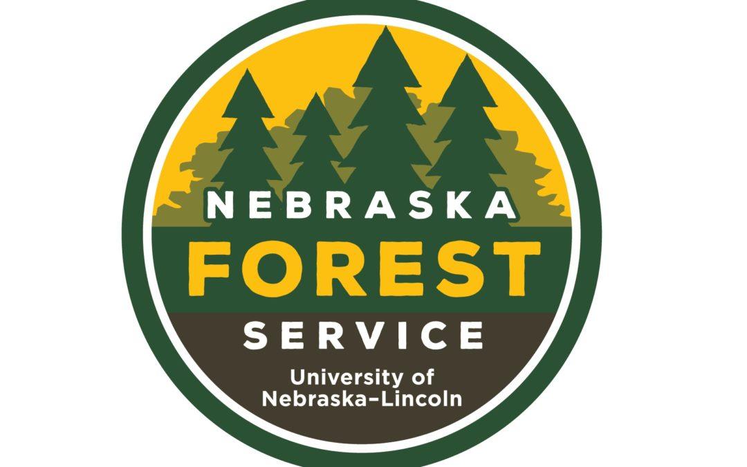 Community Wildfire Protection Plan Update Underway