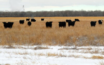 Meeting To Be Held at Valentine Livestock April 13th