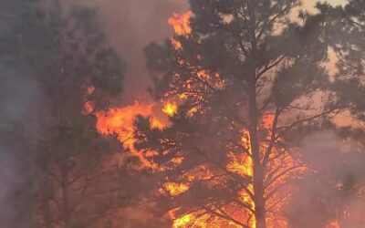 Fire in the Spring Creek Area on Friday